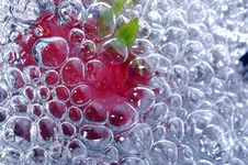 Free Fresh Strawberry In Water Royalty Free Stock Photography - 1458277