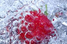 Free Fresh Strawberry In Water Stock Image - 1458281