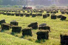 Free Tractor Stock Photo - 1458900
