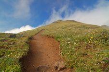Free Mountain Meadow Stock Photos - 1459793