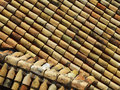 Free Rustic Roof Tiles, Background Royalty Free Stock Photo - 14501815