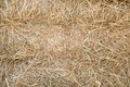 Free Hay Royalty Free Stock Images - 14501829