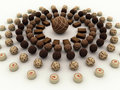 Free Chocolate Truffles Assortment Stock Images - 14507234