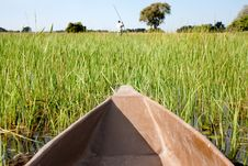 Free Mokoro Amongst The Reeds Royalty Free Stock Images - 14500279