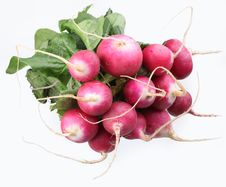 Free Bunch Of Radishes Stock Images - 14501014