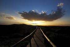 Free Path To The Sun Stock Images - 14501254