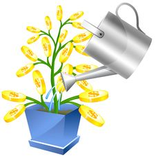 Free Money Tree With Watreing Can Stock Image - 14501391
