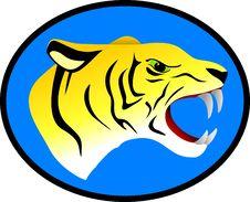 Free Vector Ferocious Tiger Royalty Free Stock Photos - 14501998