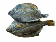 Free Two Fish Of The Plaice Stock Photography - 14502022