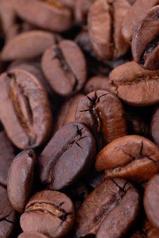 Free Black Coffee Royalty Free Stock Photo - 14502715
