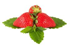 Free Strawberry On Leaf With Hand Made Clipping Path Royalty Free Stock Photo - 14503205