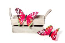 Free Two Colorful Butterflies Royalty Free Stock Photo - 14503665