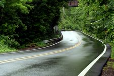 Free Curvey Rural Road Stock Photography - 14505232