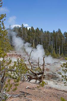Free Yellowstone Hot Spring Royalty Free Stock Photo - 14506305