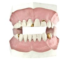 Free Tooth Isolated Stock Photography - 14506542