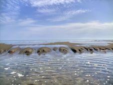 Free Beach Royalty Free Stock Photo - 14506595
