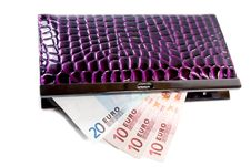 Free Purse With Euro Banknotes Royalty Free Stock Image - 14506636