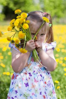Free Little Girl With Dandelions Royalty Free Stock Photos - 14507178