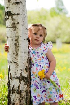 Little Girl Near Birch Royalty Free Stock Image