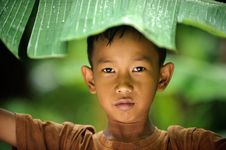 Free Child Hiding From Rain Royalty Free Stock Photo - 14508715