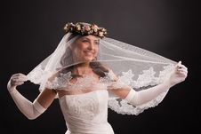 Free Young Bride Royalty Free Stock Image - 14509246