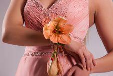 Free Young Bride Stock Photos - 14509263