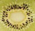 Free Kiwi Cut Stock Image - 14513921