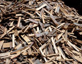Free Fire Wood Stock Photography - 14516592