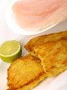 Free Fish Filet With Lemon Stock Image - 14519261