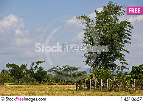 Rural view Stock Photo