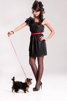Free Young Woman With A Little Dog Royalty Free Stock Photo - 14510335