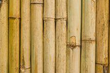 Free Bamboo Stock Image - 14510691