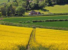 Free An English Rural Landscape Stock Photos - 14510873