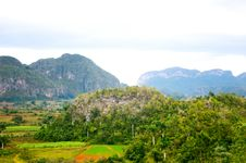 Vinales Valley Stock Images
