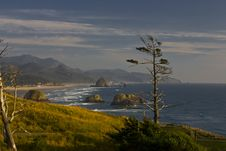 Free Haystack Rock From Ecola State Park In Oregon Stock Photography - 14513622