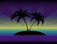 Free The Palm Trees  Silhouette Royalty Free Stock Photos - 14514188