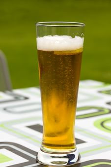 Glass Beer Or Lager,in The Restaurant Royalty Free Stock Photos