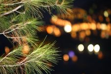 Free Night Shot, Bokeh For Christmas Stock Images - 14516904