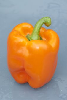 Orange Pepper Stock Image