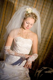 Bride Puts On A White Glove Stock Photography