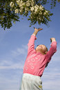 Free Jump Of Little Girl And The Flower Royalty Free Stock Images - 14526039