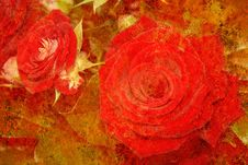 Vintage Styled Roses Royalty Free Stock Photo