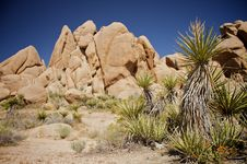 Free Desert Rocks Stock Photo - 14520700