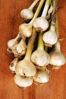 Free Garlic Bunch On Cutting Board Stock Photos - 14520823