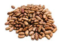 Free Beans Stock Image - 14522681
