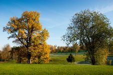Free Green Park Stock Images - 14523114