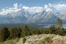 Free Tranquility Of Grand Teton Royalty Free Stock Photo - 14523415