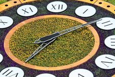 Free Big Clock Made Of Flowers Royalty Free Stock Photos - 14527788