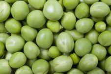 Free Fresh Green Peas. Stock Photography - 14528912