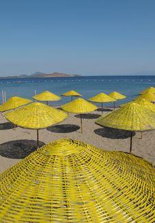 Free Yellow Parasols Stock Image - 14529101